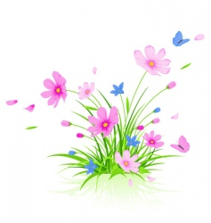 Floral background with cosmos flowers vector