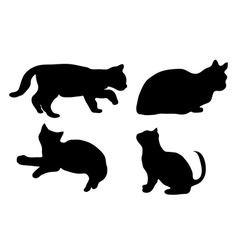 Silhouette of the cat vector image