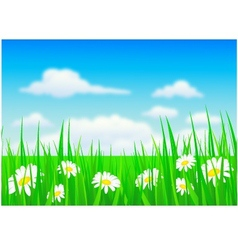 nature background with grass and f vector image