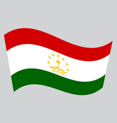 Flag of tajikistan waving on gray background vector