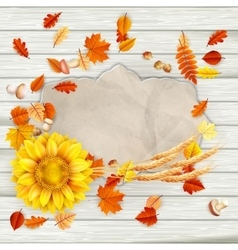 Colorful leaves background eps 10 vector