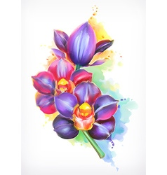 Beautiful orchid watercolor painting mesh vector image