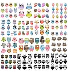 Big set of owls vector image vector image