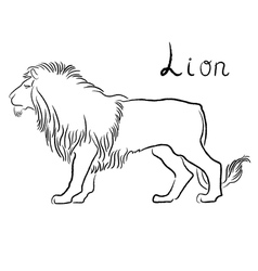 Black graceful lion contour vector