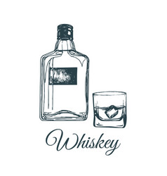 hand sketched whiskey bottle and glass vector image vector image
