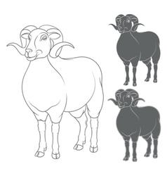 set of depicting sheep vector image