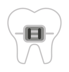 tooth healthcare isolated icon vector image