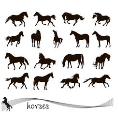 Collection of silhouettes of horses vector