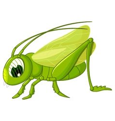 Cute grasshopper cartoon vector
