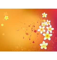beautiful flowers in grunge background vector image vector image