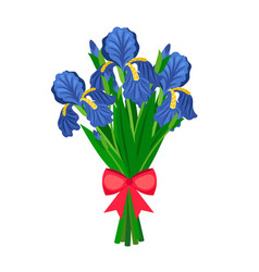 Bouquet of blue irises vector