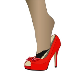 Sensual fetish The passion for womens shoes vector image vector image