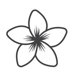 thin line petals icon vector image vector image