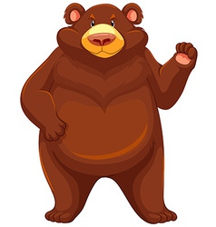 Big brown bear vector