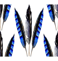 Blue feather2 vector image vector image