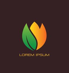 leaf flower eco logo vector image vector image