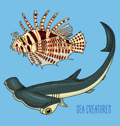 Sea creature red lionfish and great hammerhead vector