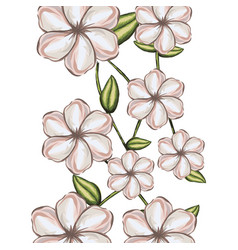 Watercolor background of white malva flower with vector