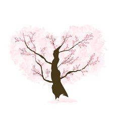 Abstract floral sakura flower japanese tree vector