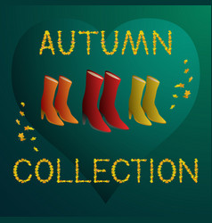 autumn collection - women boots vector image vector image