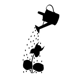 Watering pot and flower vector image vector image