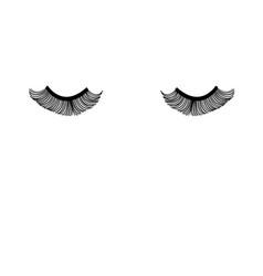 Closed eyes with eyelashes vector