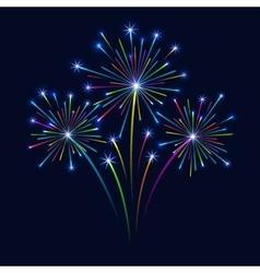 Firework on dark background vector