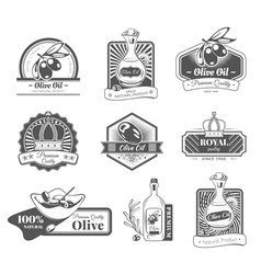 Set with labels on the theme olive oil vector image