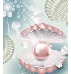 Background with pearl vector