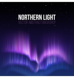 Aurora borealis northern light winter vector