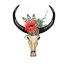 Bull Skull Poppy vector image
