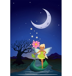 Night fairy vector