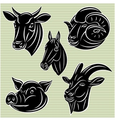 collection of heads animals for design vector image