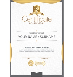 Certificate a beautiful clean vector
