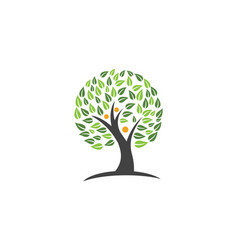 family tree symbol icon logo design vector image vector image