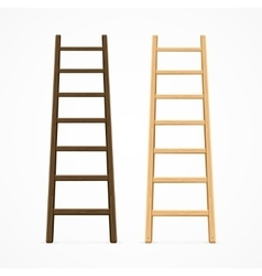Set of Various Ladders vector image