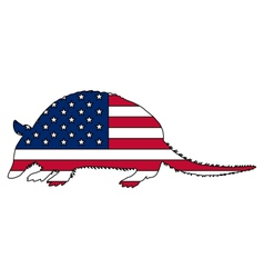 Armadillo united states of america vector