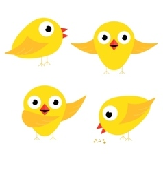 Happy yellow chicken singing bow and eat vector