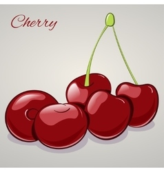 Cartoon sweet cherries isolated on grey background vector