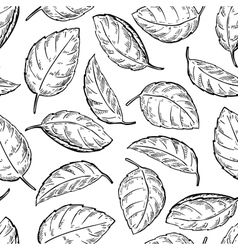 Mint drawing seamless pattern Isolated vector image