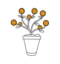 Money plant in pot icon image vector