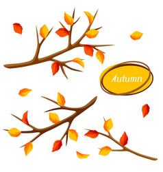 Autumn set with branches of tree and yellow leaves vector