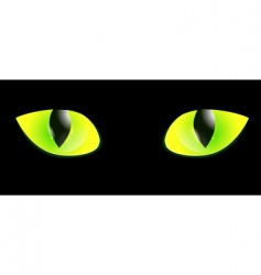 Cat eye vector
