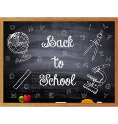Back to school written on a black chalkboard vector