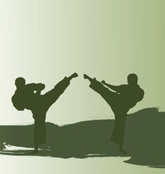 Men are engaged karate vector