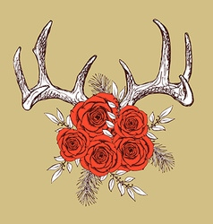 Antlers and roses vector