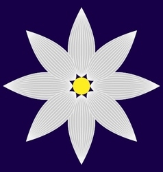 Flower image vector