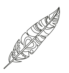 Isolated feather plume design vector