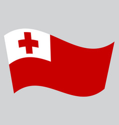 Flag of tonga waving on gray background vector