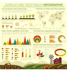 Infographic template for agriculture vegetables vector